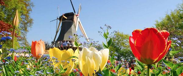 nederland-land-toekomst.jpg