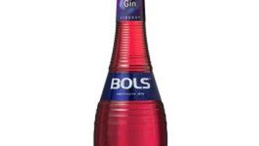 Bols Likeur Sloe Gin 0.7 ltr