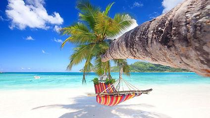 gekleurde-hangmat-palmboom.jpg