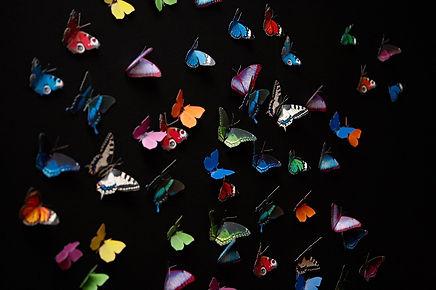 Butterflies MEGA PACK DIY wall sculpture / Wand-Deko Schmetterlinge MEGAPACK
