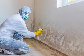 woman-removes-mold-wall-using-spray-bott