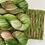 Thumbnail: Aburi Botanical