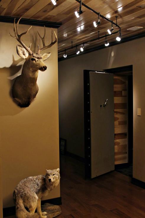 Indoor-Lighting-Ceiling.jpg