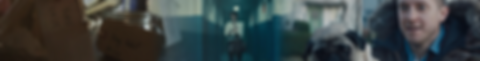Fiction Banner.png