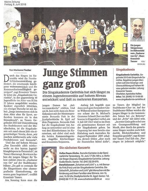 Pressebericht SAC Kleine Zeitung 0806201
