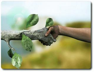 Tecnología y Educación Ambiental