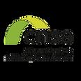 Logo CNSA.png