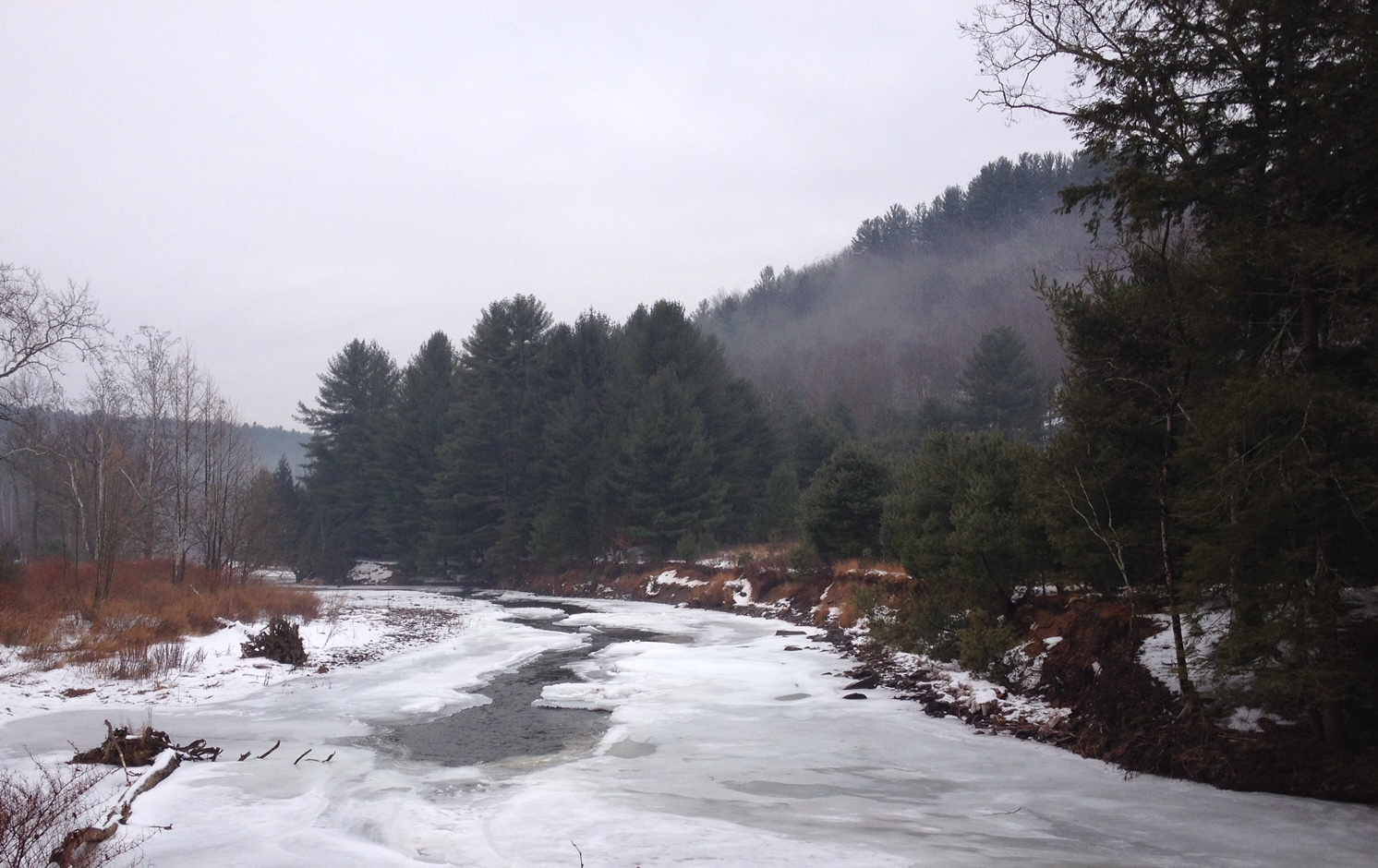 Callicoon Creek