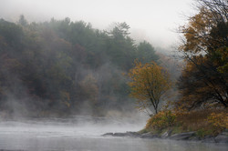 Delaware River Fog