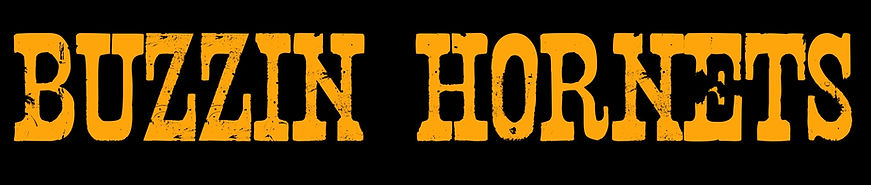 Hornets Web Header_edited.jpg