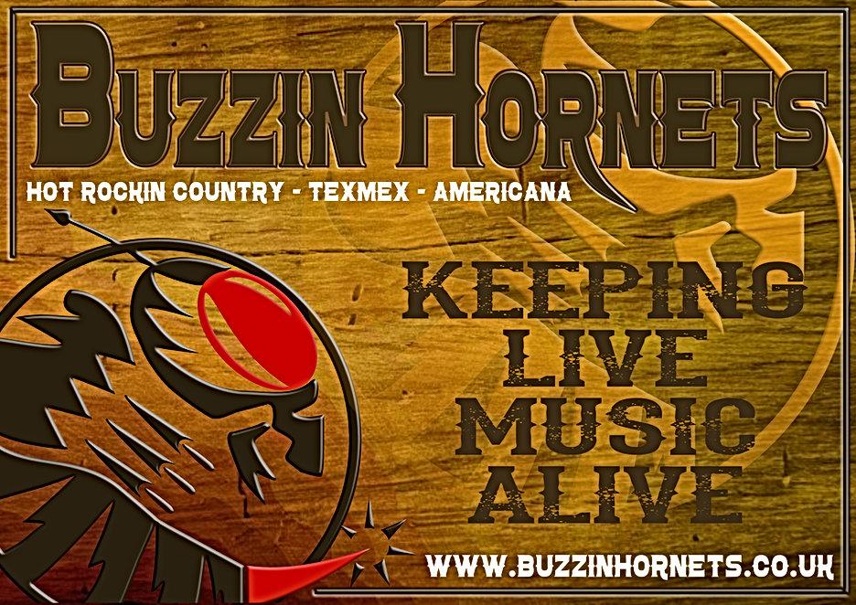Hornets Shadow Poster Wood.jpg