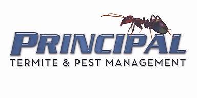principal termite.jpeg