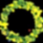 aureola verde amarilla.png