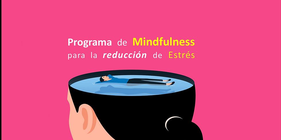Programa de Mindfulness para la reducción de Estrés