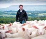 Simon with some of his sheep