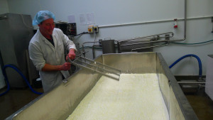 Stu being camera shy, cutting the small vat