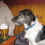 enjoying a pint