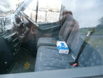Our blue dairy gloves in the van