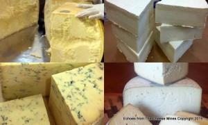 Parmigiano-Reggiano (Raw); French Goat Brie (Pasteurized); Stilton (Pasteurized); Sleeping Beauty (Raw)