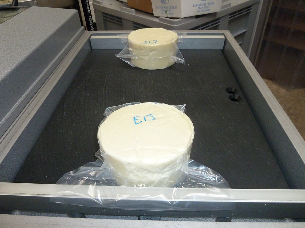 Our vac packer which has two chambers and can take two cheese per chamber