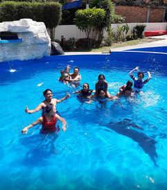 Zoes Paradise Waterfron Hotel Samosir Island