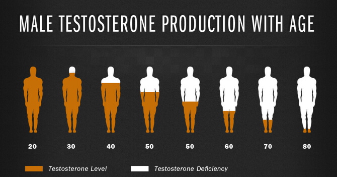 testosterone-production BY AGE