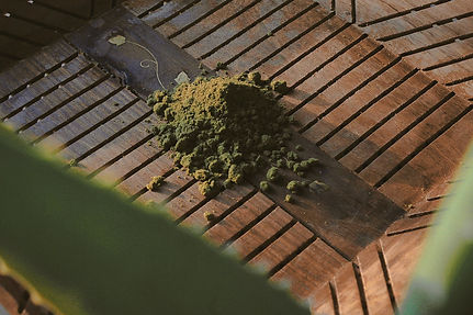 a scoop of Green Hemp Powder on a tray