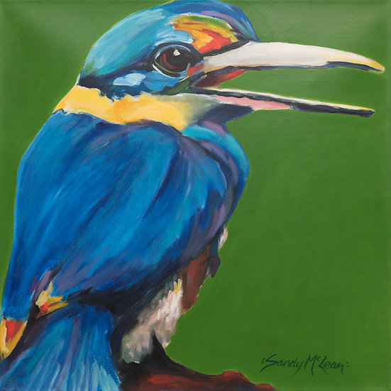 PETE the KINGFISHER