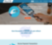 Credit card processing web design project