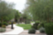 Apartment community professional landscaped