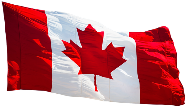 Providing Saskatoon with premier immigration services