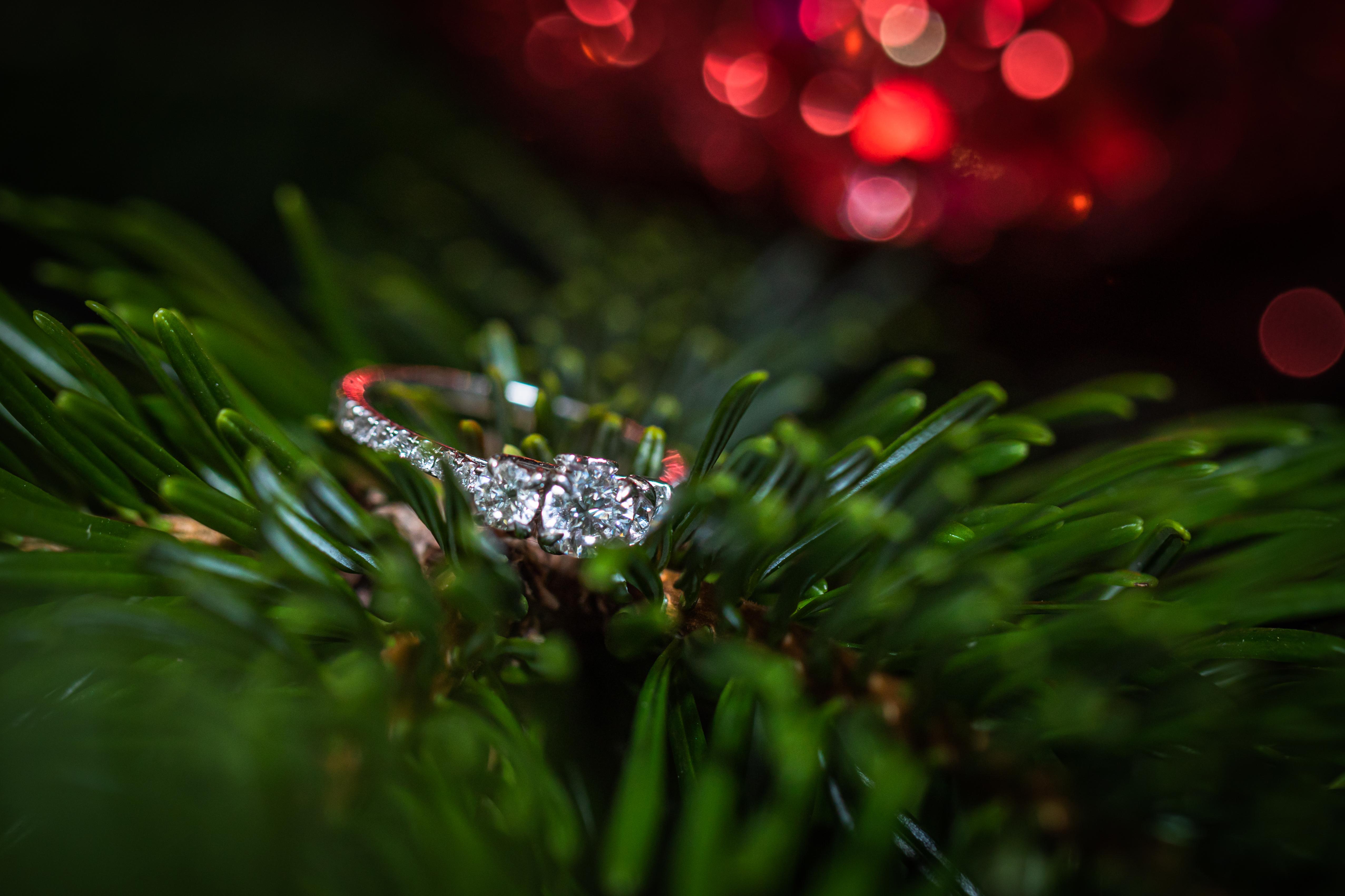 Kent Wedding Photographer| Kent Wedding photography| Leeds Castle Kent