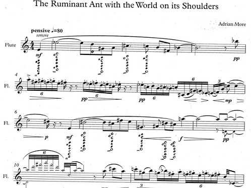 The ruminant ant with the world on its shoulders - for Solo Flute