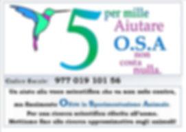 5x1000_OSA.jpg