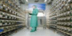 stress negli animali da laboratorio: affollamento