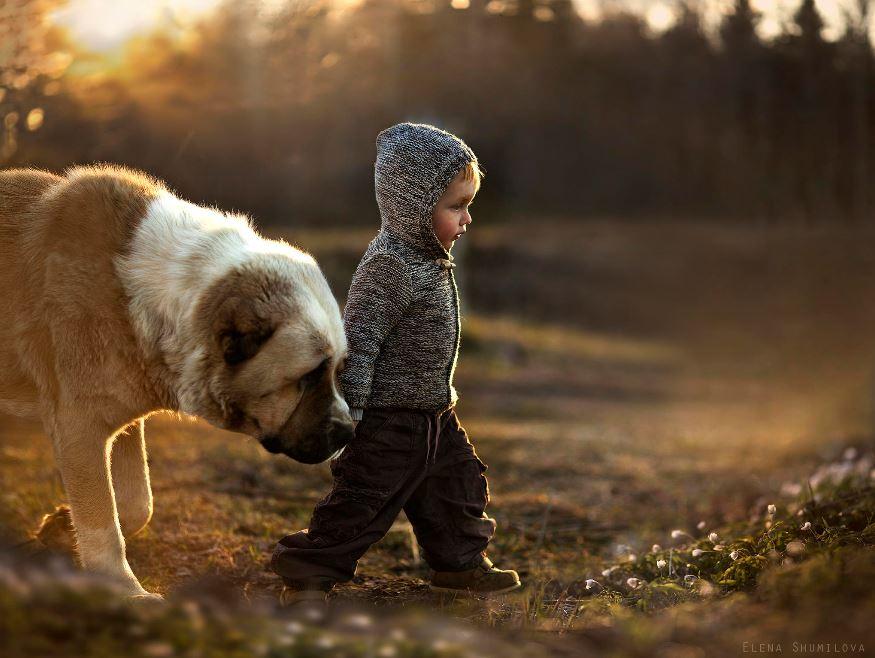 Photo credit: Elena Shumilova