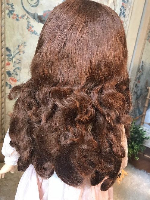 "Fantastic Deep Chestnut 13""  Long-Tailed Wig ~DSB ~"