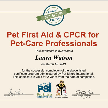 Pet First Aid & CPCR for Pet-Care Professionals
