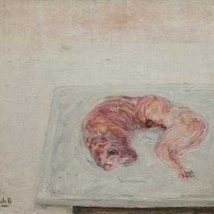 """""""Conejo desollado"""" 1977. Óleo sobre tabla 50x61 cms."""