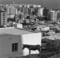 PÉREZ_SIQUIER_-_Almería_1970_fotografia_en_b-n_en_tela_de_hule_sobre_bastidor_de_aluminio