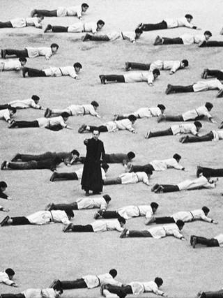 Los cachorros. 1964