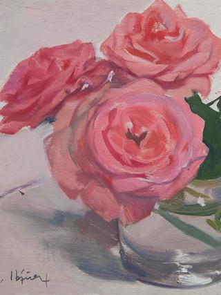 Rosas rosas. 2017