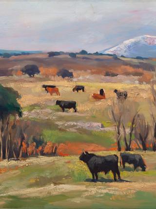 """Luis Cañadas Fernández (Almería, 1928 - 2015) """"Dehesa"""". C. 1980. Óleo sobre lienzo."""