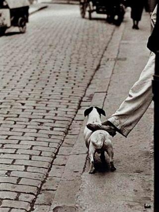 """""""Pamplona"""". 1957."""