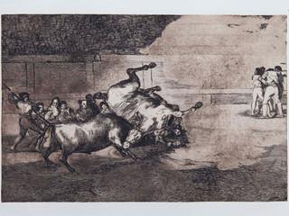 """Caballero derribado por un toro"". Serie La Tauromaquia. 1815 - 1816. Tirada de 1983, Calcografía Nacional.  Aguafuerte. y aguatinta. Huella 24x35 cms."