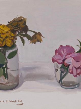 Rosas marchitas.