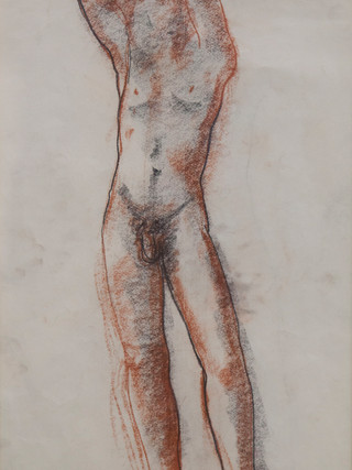 """Antonio Campillo Párraga (Murcia, 1926 – 2009) """"Desnudo masculino de frente"""". 1960. Sanguina sobre papel. 43x27 cms."""