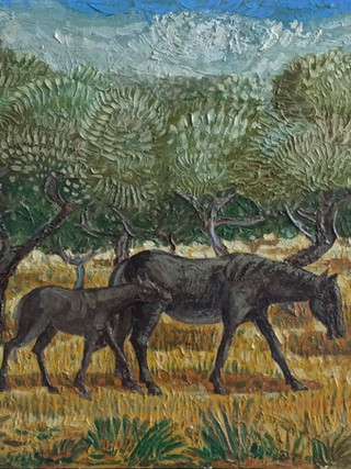 """Francisco García Jiménez """"Pituco"""". (Granada, 1934 - Almería, 1991). """"Caballos"""". Hacia 1980. Óleo sobre lienzo. 54x65 cms."""
