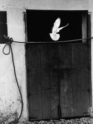 Arcos de la Frontera. 1959