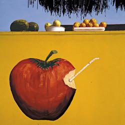 PÉREZ_SIQUIER_-_Marbella_1983_fotografía_en_color